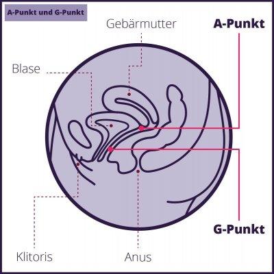 G-Punkt war gestern: Mit A-Punkt und U-Punkt die weibliche